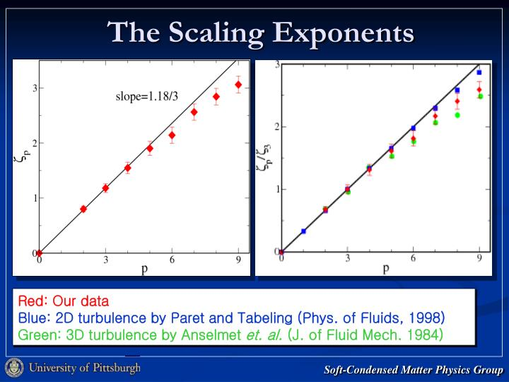 The Scaling Exponents