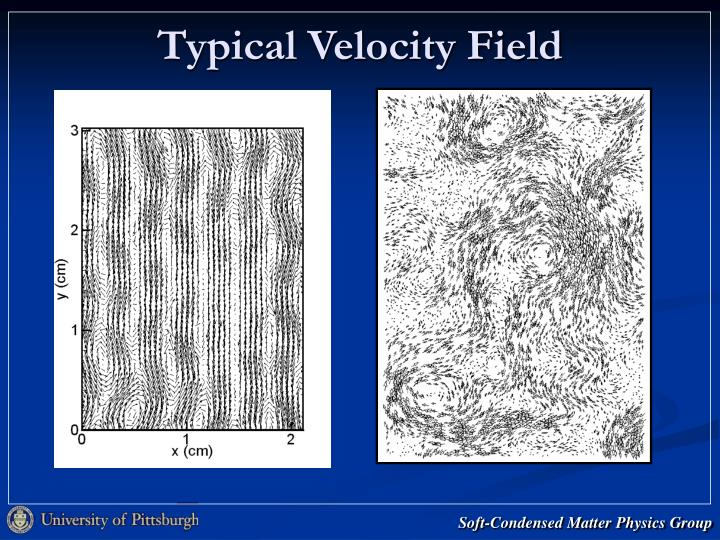 Typical Velocity Field