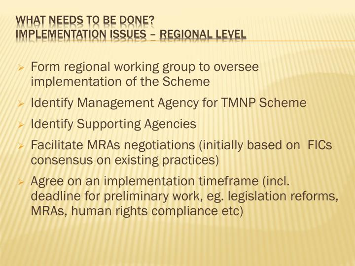 Form regional working group to oversee implementation of the Scheme