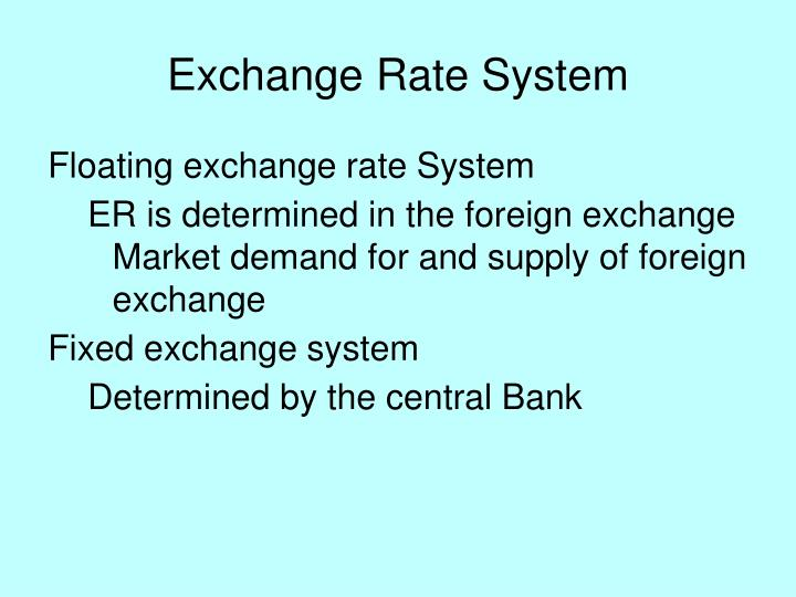 Exchange Rate System