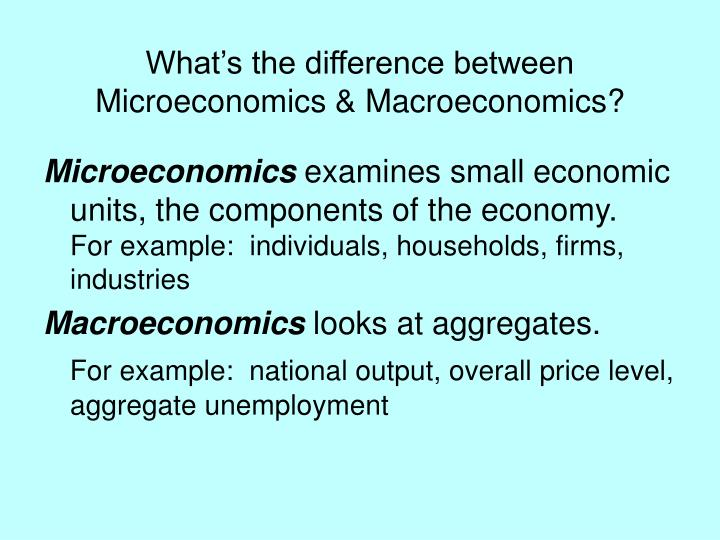 What s the difference between microeconomics macroeconomics