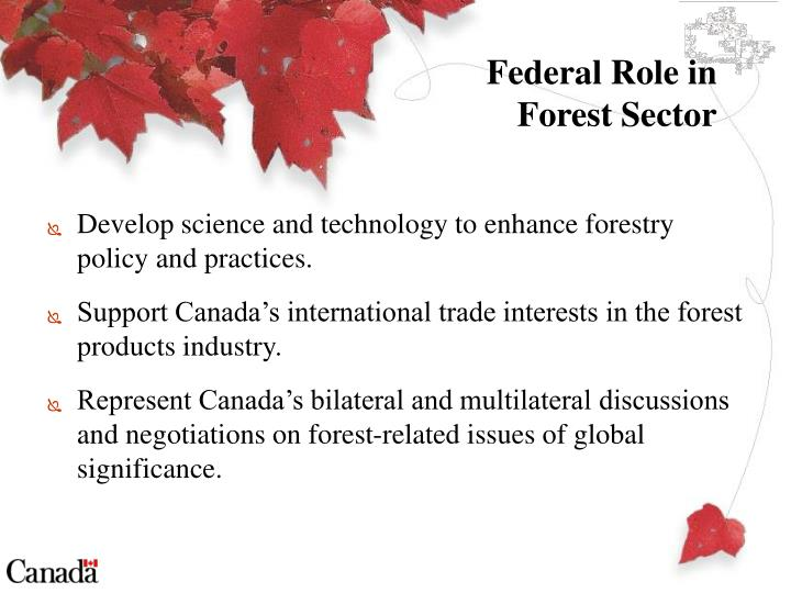 Federal role in forest sector
