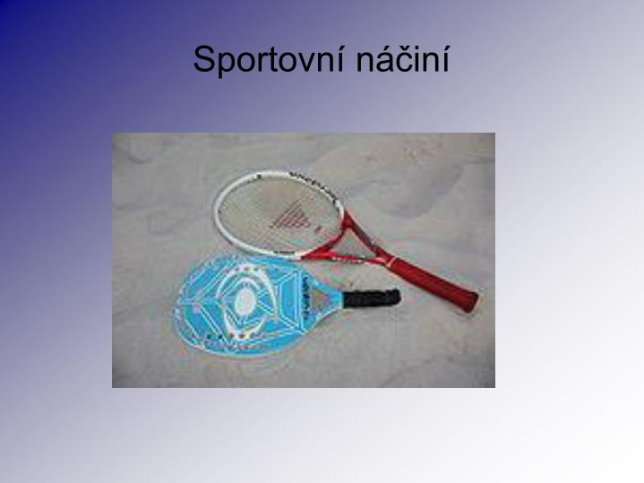 Sportovn n in