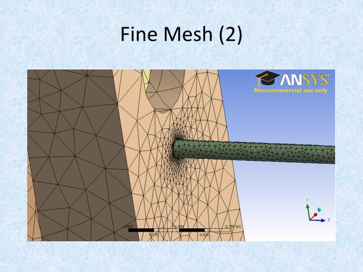 Fine Mesh (2)