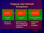 trapping user defined exceptions
