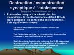 destruction reconstruction synaptique l adolescence bourgeois desmotes mainard 2001