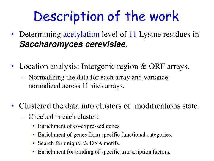 Description of the work