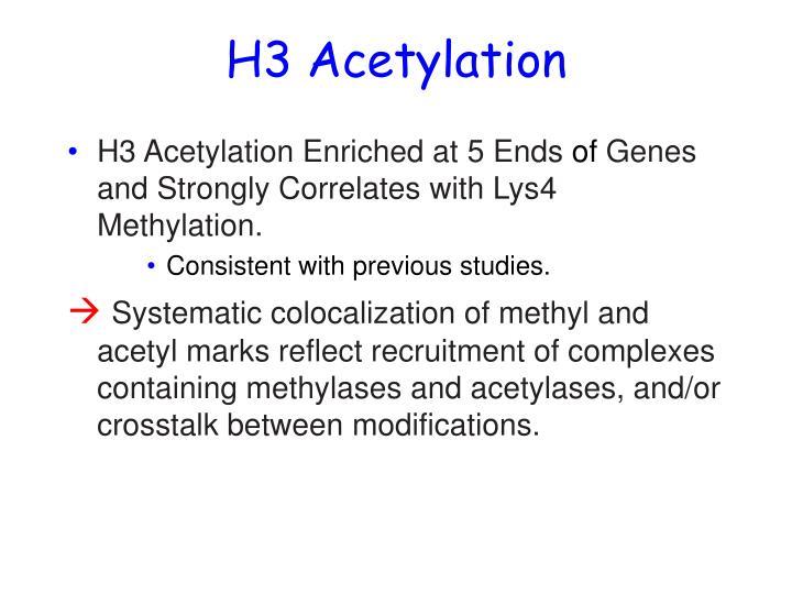 H3 Acetylation