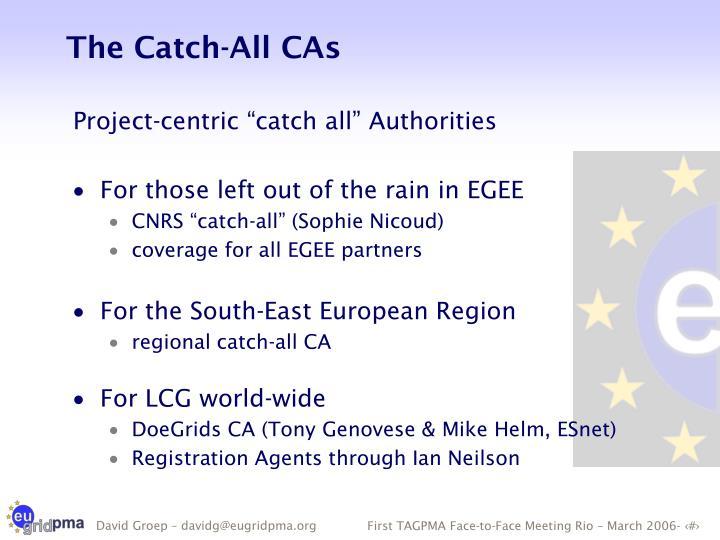 The Catch-All CAs