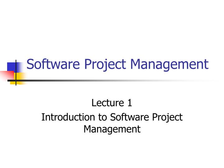 software project management n.