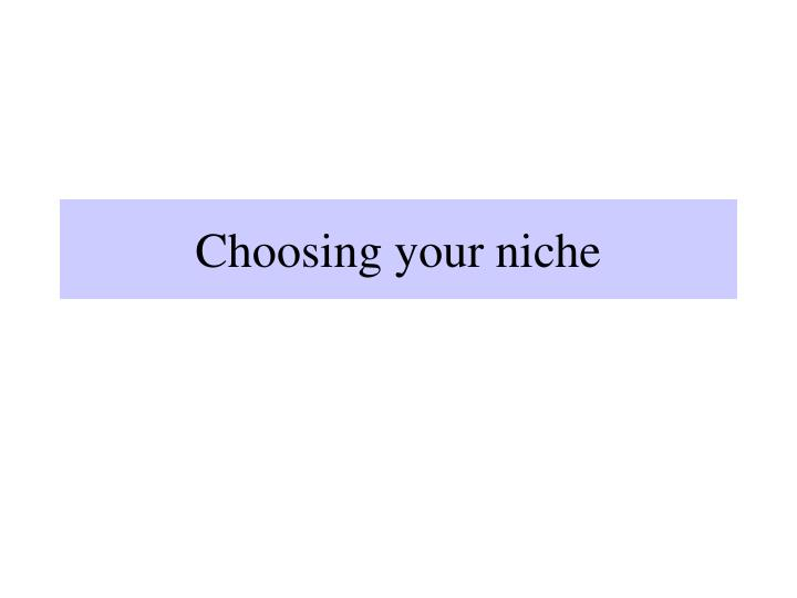 choosing your niche n.