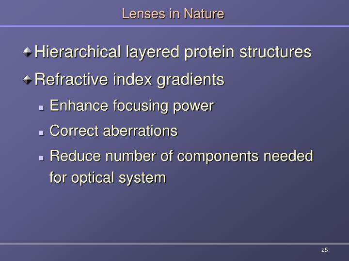 Lenses in Nature