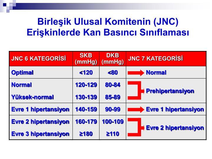 Birleşik Ulusal Komitenin (JNC)