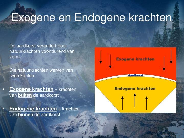 Exogene en endogene krachten
