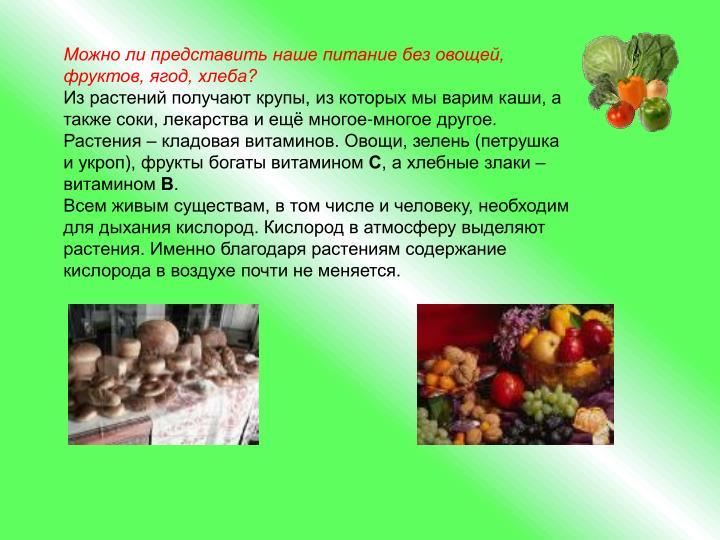 Можно ли представить наше питание без овощей, фруктов, ягод, хлеба?