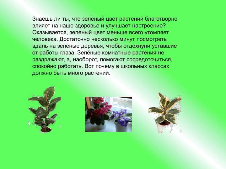 Знаешь ли ты, что зелёный цвет растений благотворно влияет на наше здоровье и улучшает настроение?