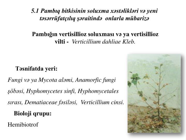 5.1 Pambıq bitkisinin soluxma xəstəlikləri və yeni təsərrüfatçılıq şəraitində  onlarla mübarizə