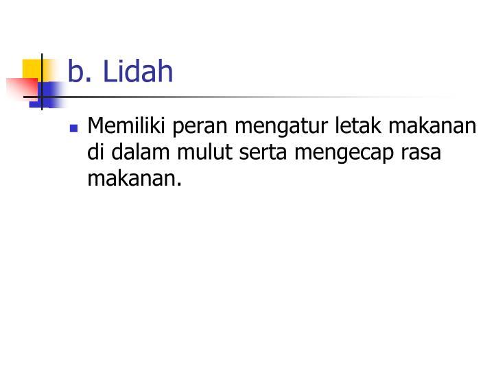 b. Lidah