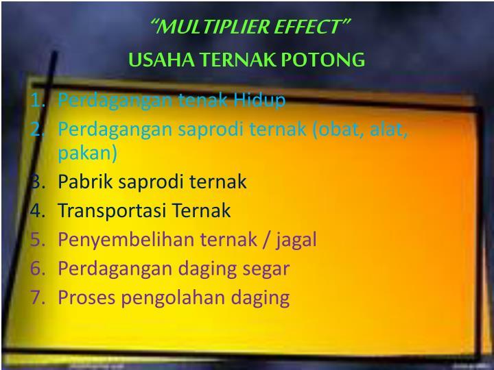 """MULTIPLIER EFFECT"""
