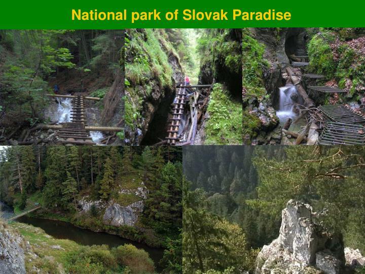 National park of Slovak Paradise