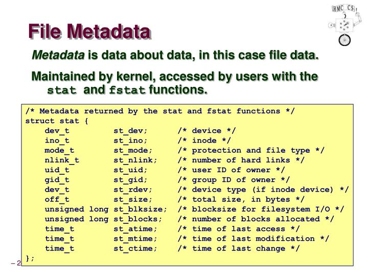 File Metadata