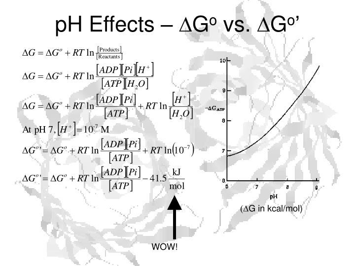 pH Effects –
