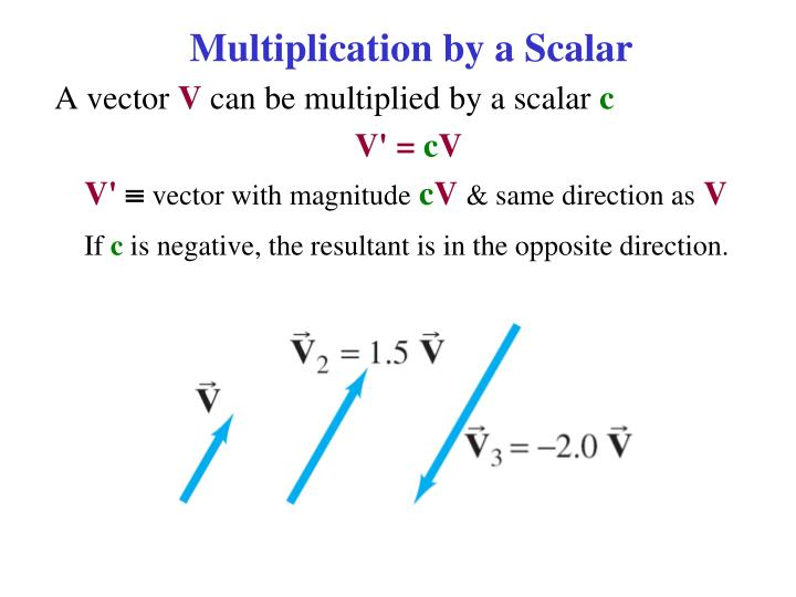 Multiplication by a Scalar