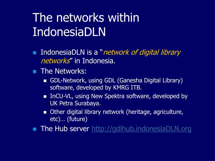The networks within IndonesiaDLN