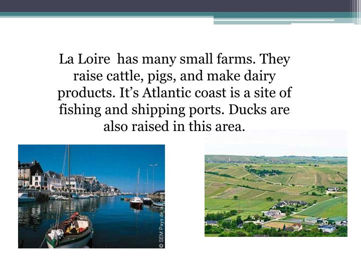 La Loire  has many small farms. They raise cattle, pigs, and make dairy products. It's Atlantic coast is a site of  fishing and shipping ports. Ducks are also raised in this area.