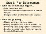 step 3 plan development