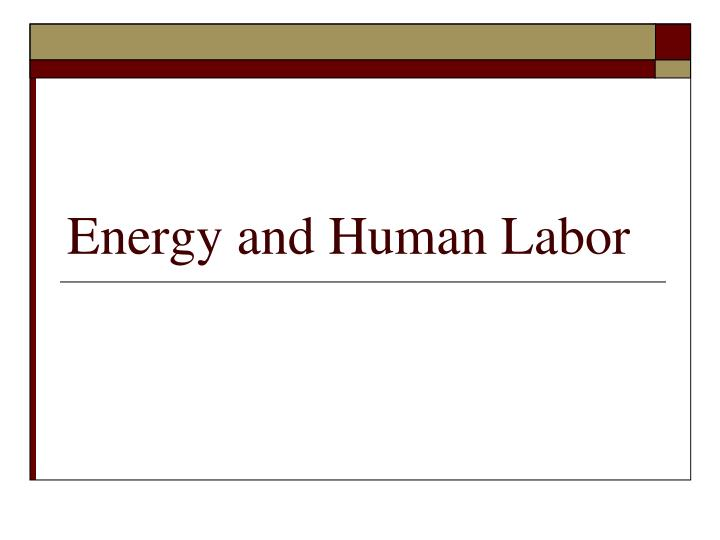 energy and human labor n.