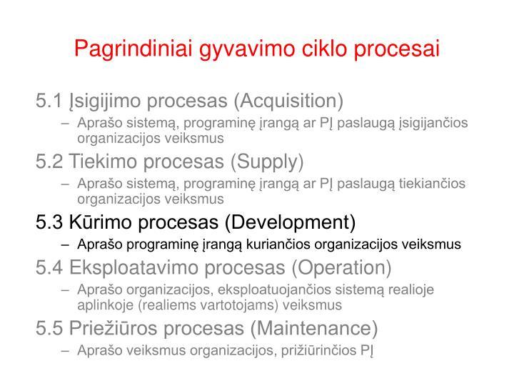 Pagrindiniai gyvavimo ciklo procesai1