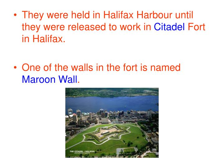 They were held in Halifax Harbour until they were released to work in