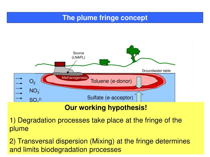 The plume fringe concept