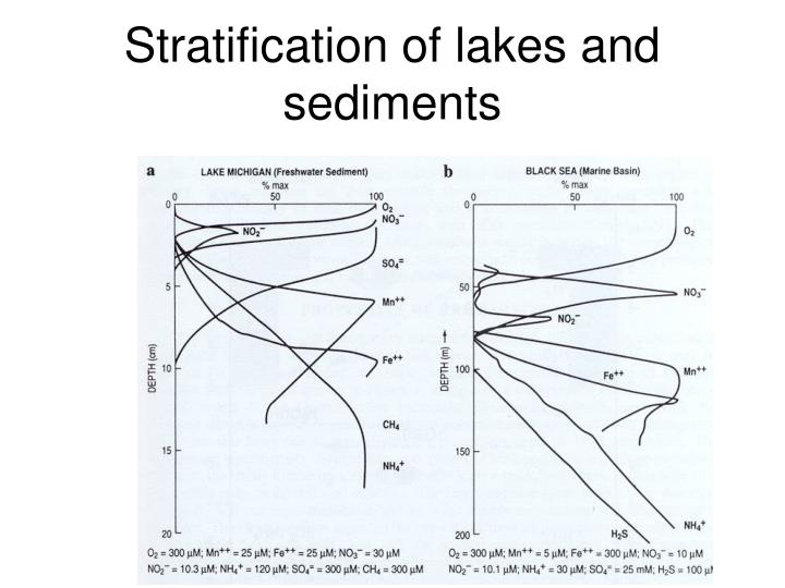 Stratification of lakes and sediments