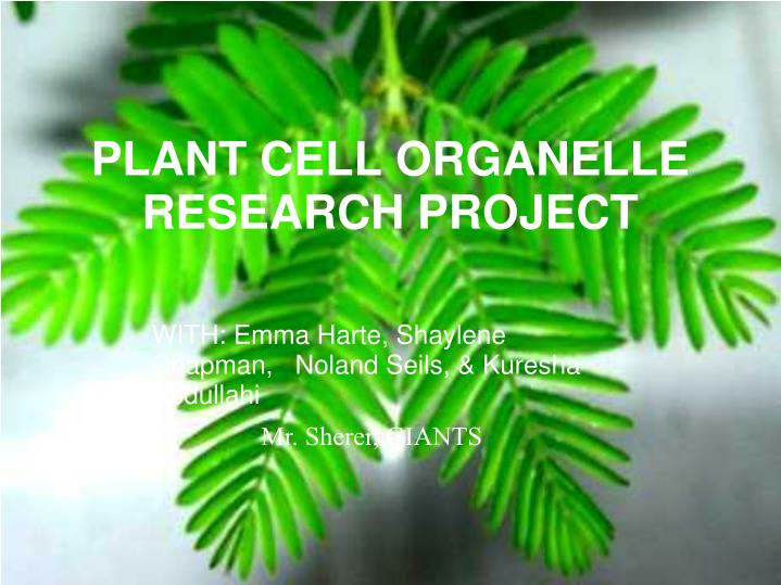 plant cell organelle research project n.