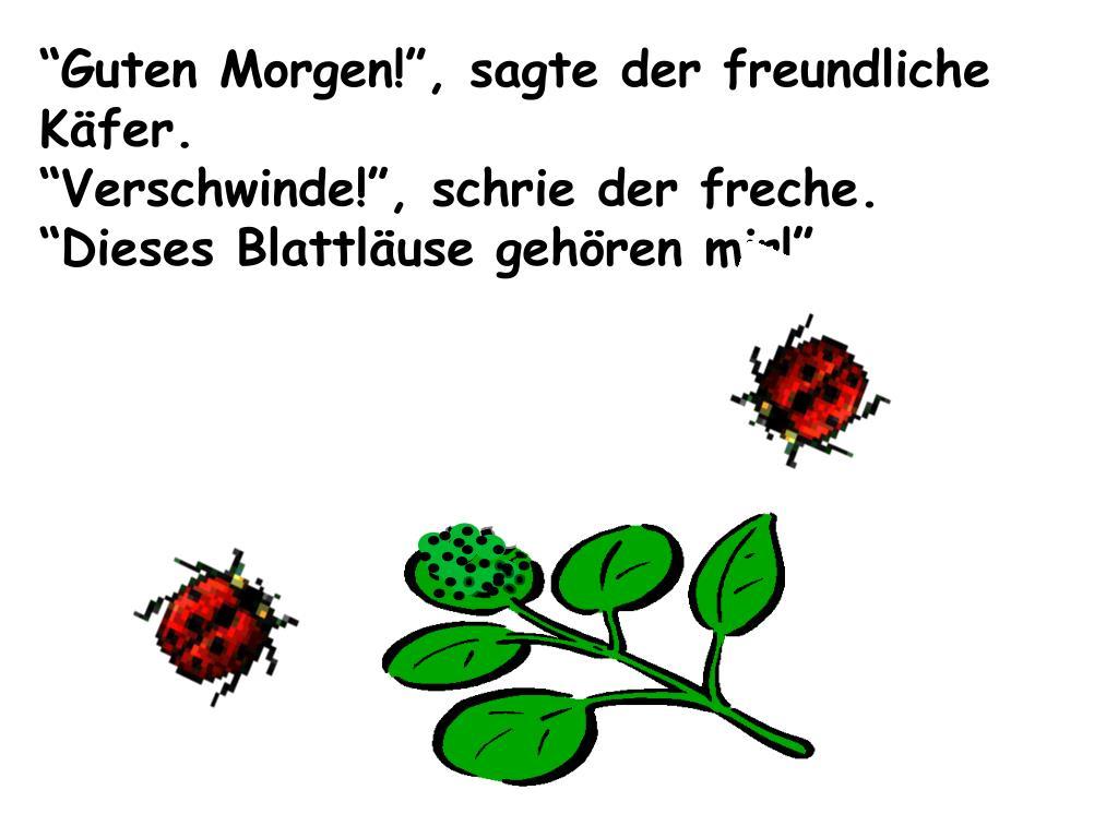 Ppt Der Kleine Käfer Immerfrech By Eric Carle Publisher