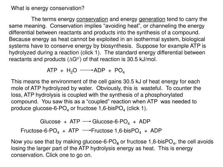 ATP  +  H
