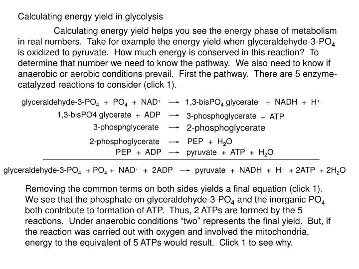 glyceraldehyde-3-PO