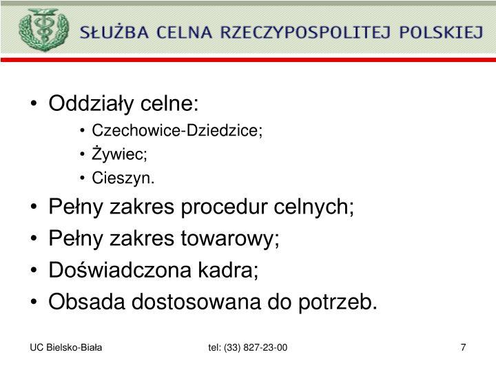 Oddziały celne: