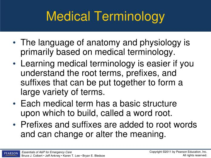 Ppt Introduction To Anatomy And Physiology Powerpoint Presentation