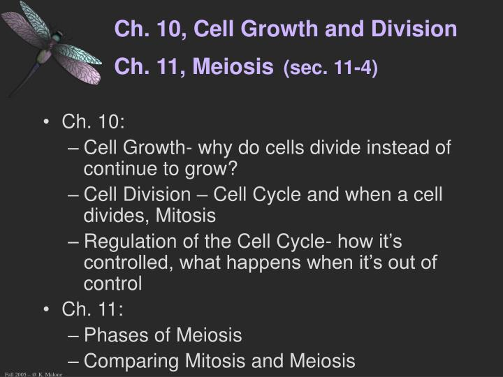 Ch 10 cell growth and division ch 11 meiosis sec 11 4