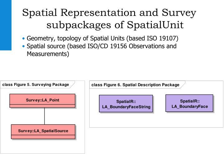 Spatial Representation and Survey