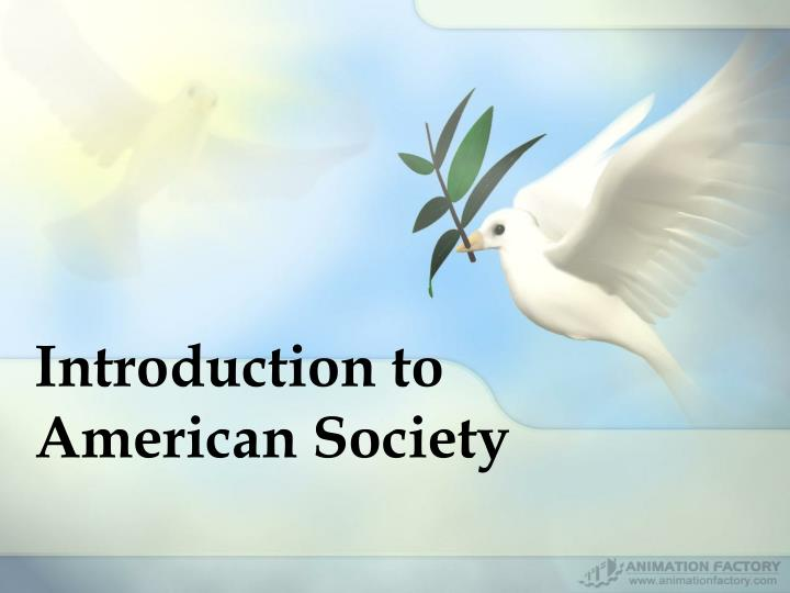 Introduction to american society