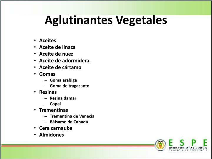 Aglutinantes Vegetales