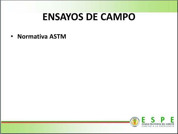 ENSAYOS DE CAMPO