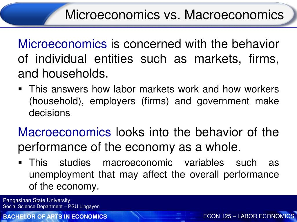 PPT - CHAPTER 1 INTRODUCTION TO LABOR ECONOMICS 1 st