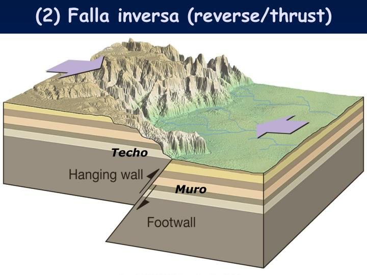 (2) Falla inversa (reverse/thrust)