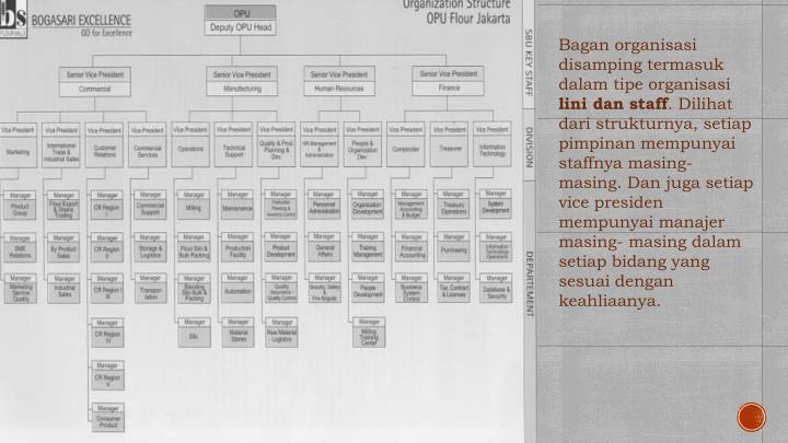 Bagan organisasi d