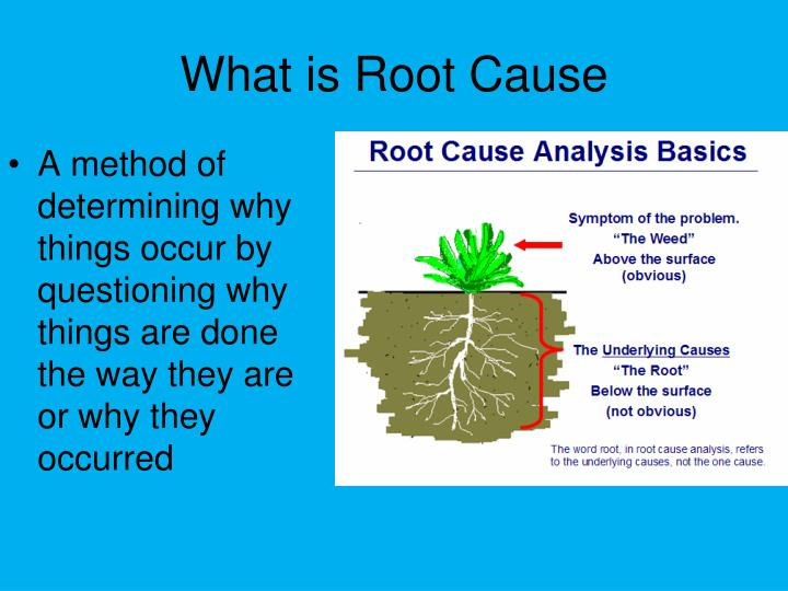What is Root Cause